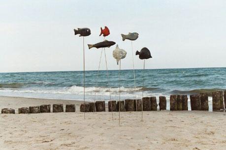 Fische am Strand